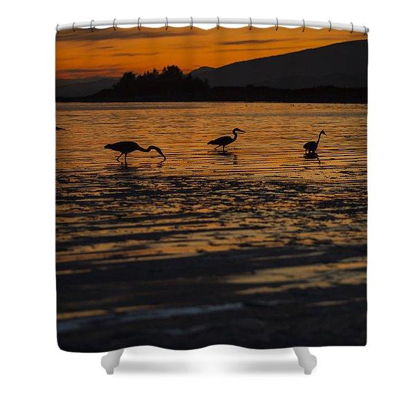 Evening Sun Shower Curtain