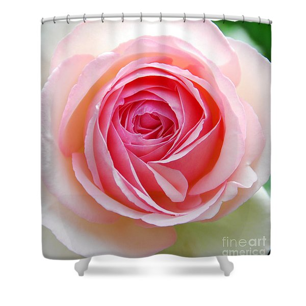 Everything Is Rosey Shower Curtain