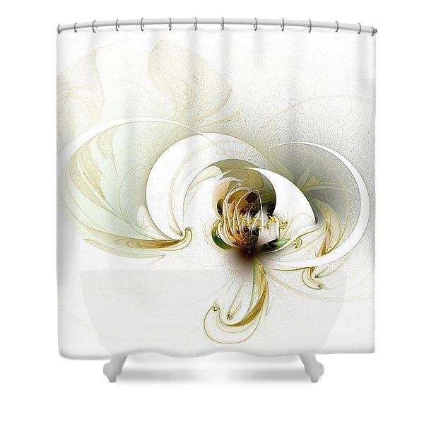 Evolving Shower Curtain