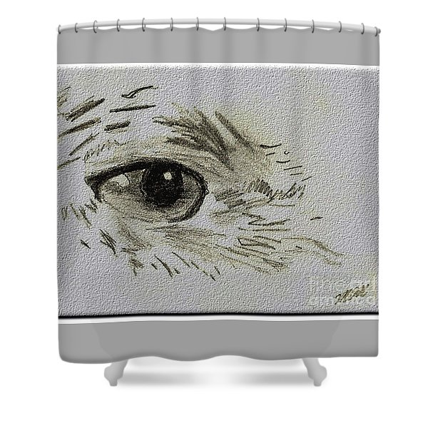 Shower Curtain featuring the drawing Eye - A Pencil Drawing By Marissa by Marissa McAlister