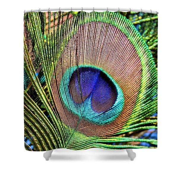 Eye Of The Feather Shower Curtain