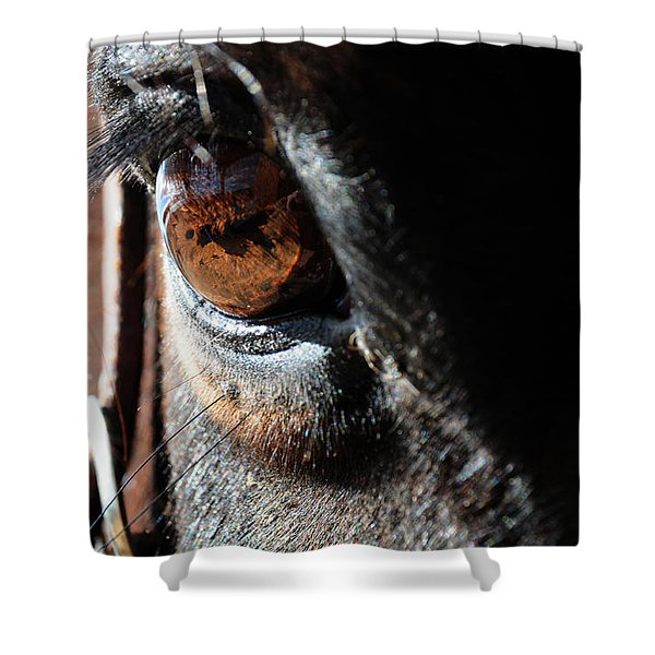 Eyeball Reflection Shower Curtain