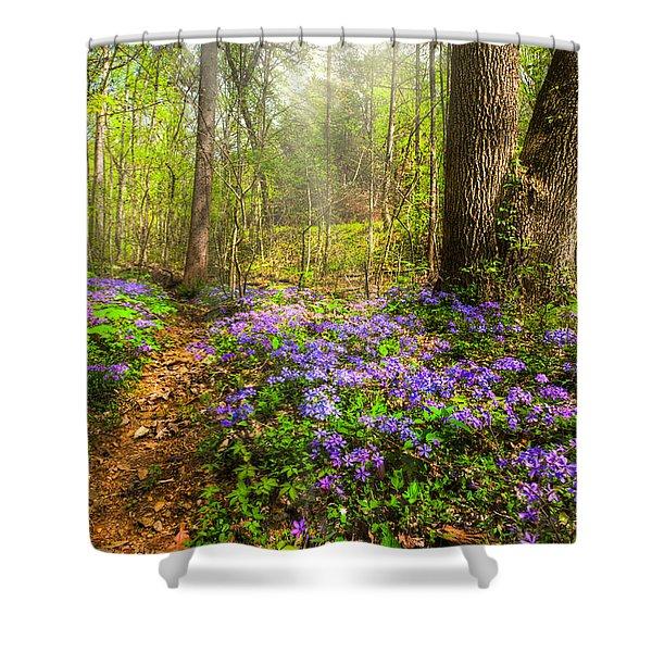 Fairies Forest Shower Curtain