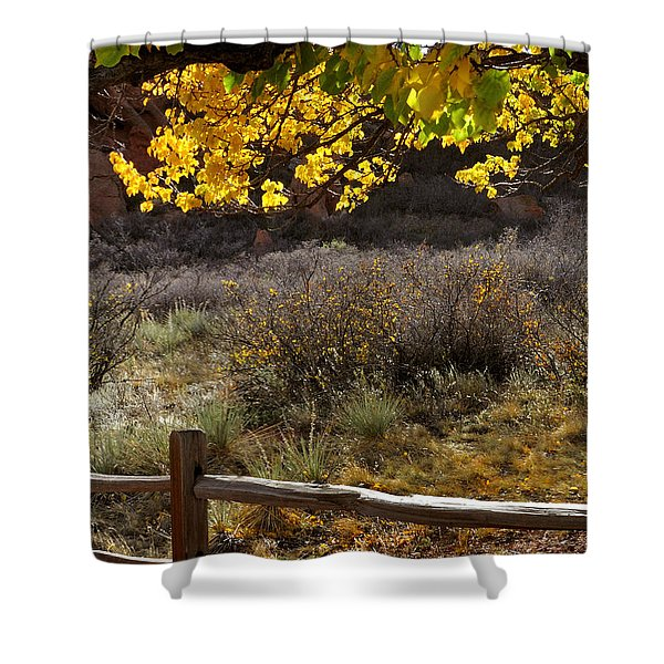 Fall Canopy And Fence 12476 Shower Curtain