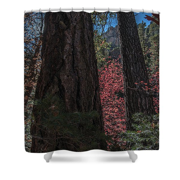 West Fork Perspective Shower Curtain