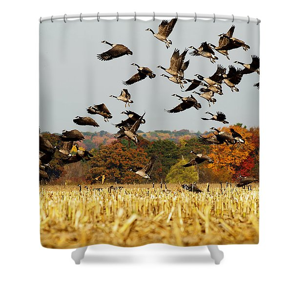 Fall Feast Shower Curtain