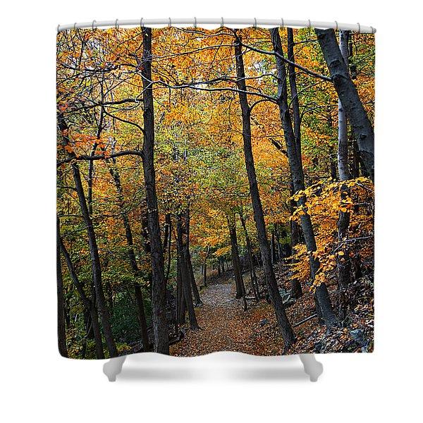 Fall Foliage Colors 03 Shower Curtain