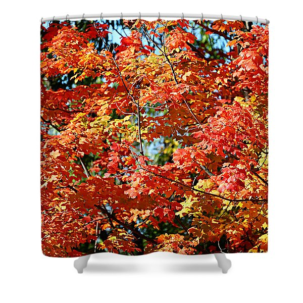 Fall Foliage Colors 22 Shower Curtain