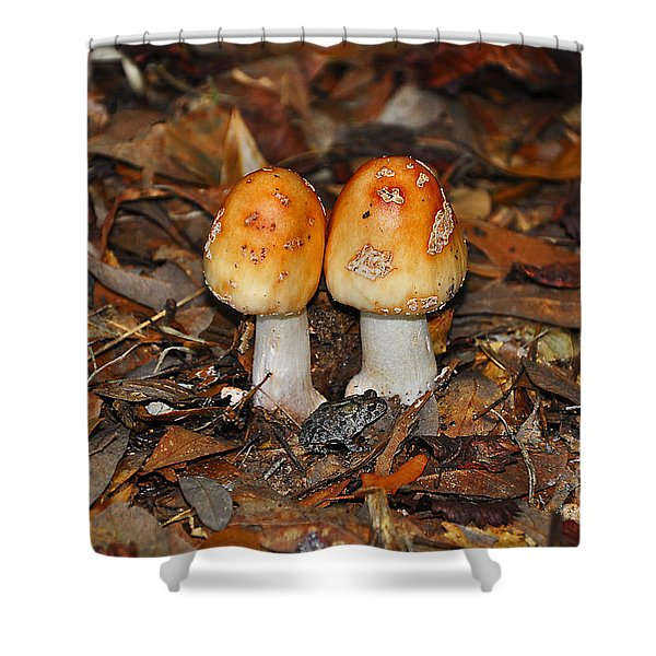Fall Fungi Shower Curtain