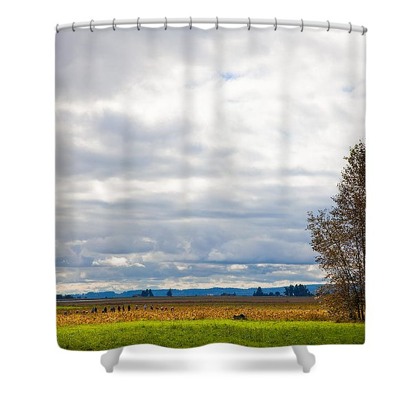 Fall Harvest In Mount Vernon Washington Shower Curtain