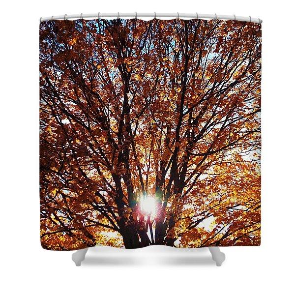 Fall Light Shower Curtain