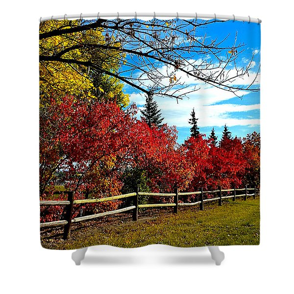Fall Lineup Shower Curtain