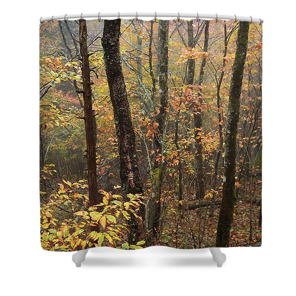 Fall Mist Shower Curtain