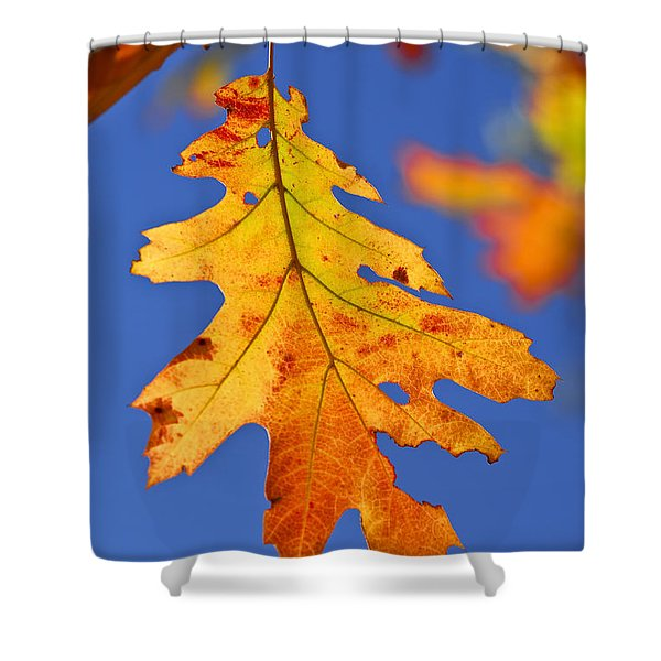 Fall Oak Leaf Shower Curtain