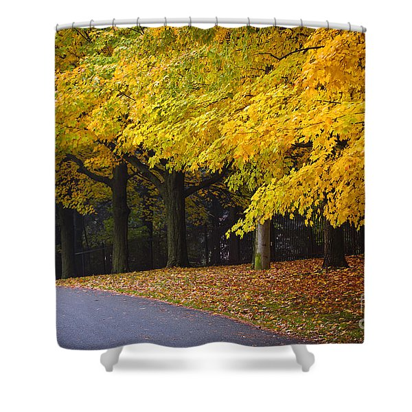 Fall Road And Trees Shower Curtain