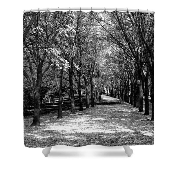 Fall Tree Promenade Landscape Shower Curtain