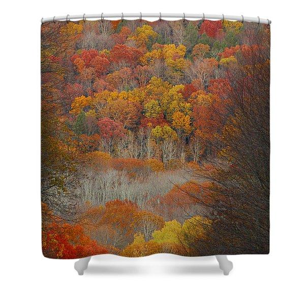 Fall Tunnel Shower Curtain