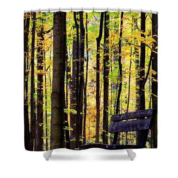 Fall Woods In Michigan Shower Curtain