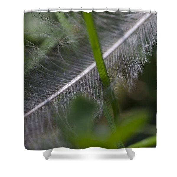 Fallen Feather Shower Curtain
