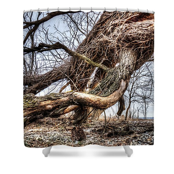 Fallen Twisted Giant Shower Curtain