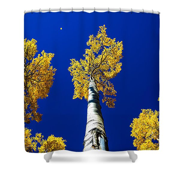 Falling Leaf Shower Curtain