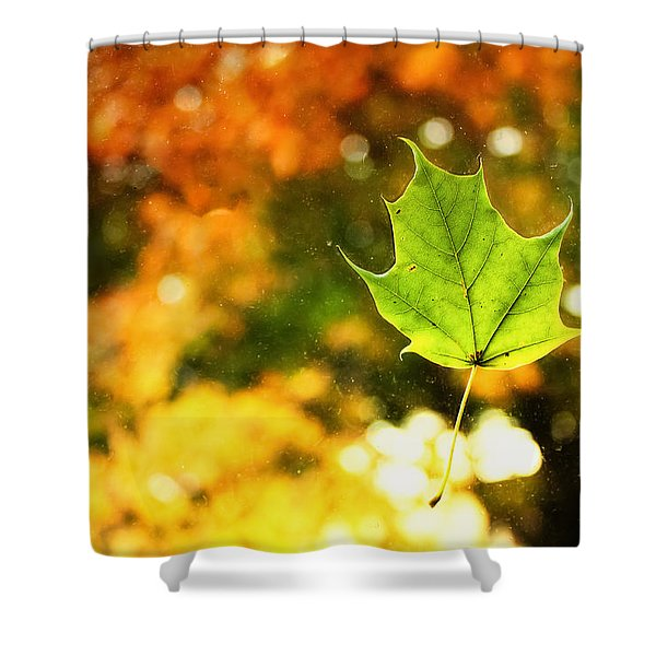 Falling Leaf Shower Curtain