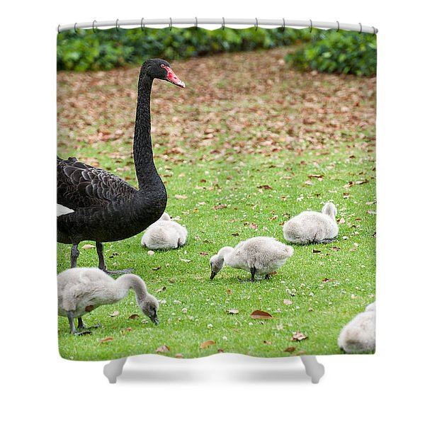 Family Of Six Shower Curtain