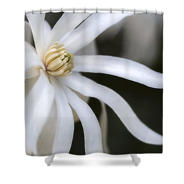 Fancy Azalea Shower Curtain