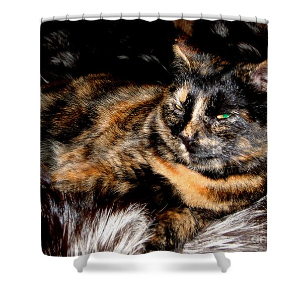 Fancy Cat Shower Curtain