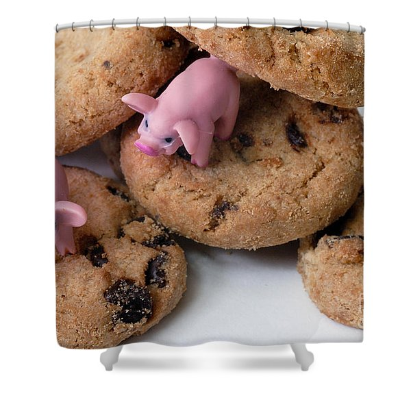 Fat Pigs 2 Shower Curtain