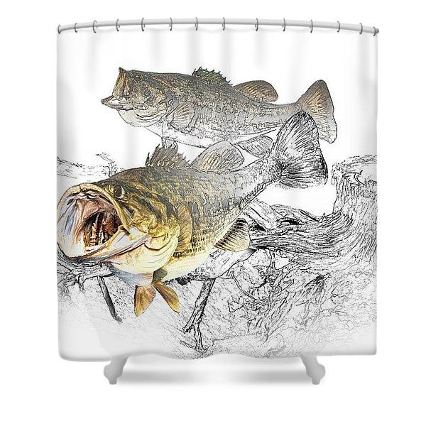 Feeding Largemouth Black Bass Shower Curtain