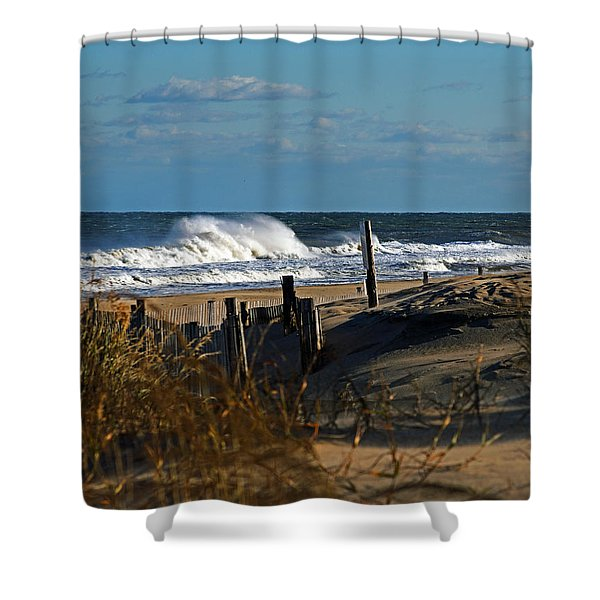 Fenwick Dunes And Waves Shower Curtain