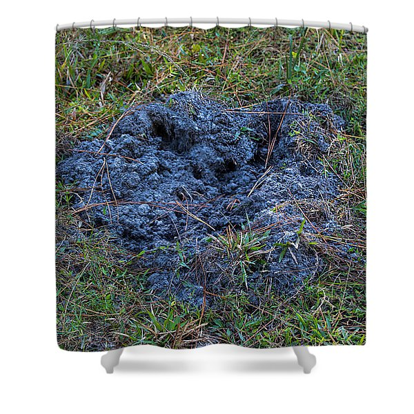 Feral Pig Digging Shower Curtain