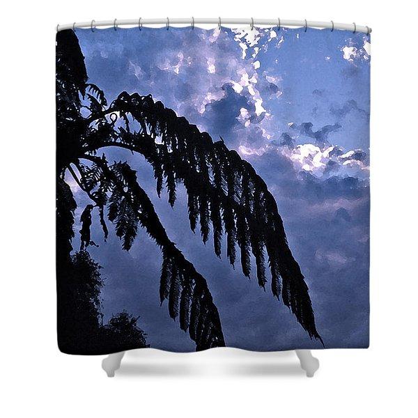 Fern At Twilight Shower Curtain