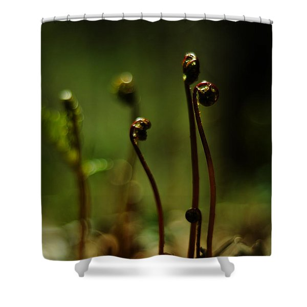 Fern Emergent Shower Curtain