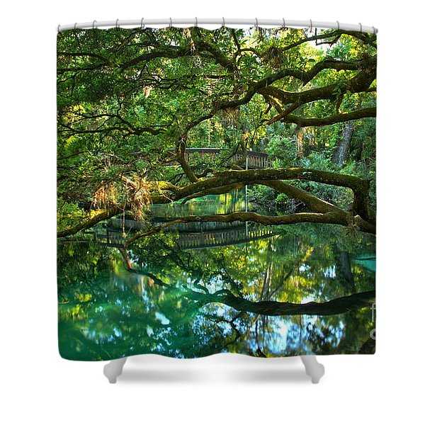 Fern Hammock Shower Curtain
