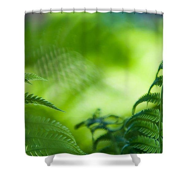Fern Leaves. Healing Art Shower Curtain