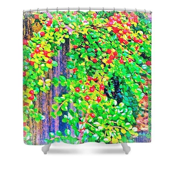 Festive Berries #floral #landscape Shower Curtain