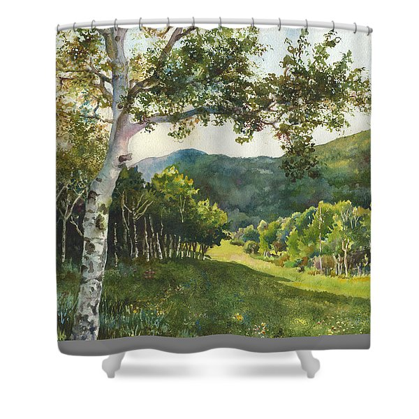 Field Of Light At Caribou Ranch Shower Curtain