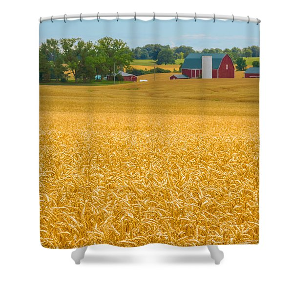 Shower Curtain featuring the photograph Fields Of Gold by Garvin Hunter