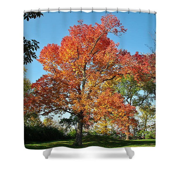 Fiery Fall Shower Curtain