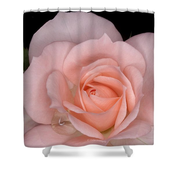 First Bloom Shower Curtain