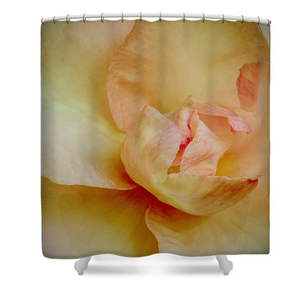 First Blush Shower Curtain