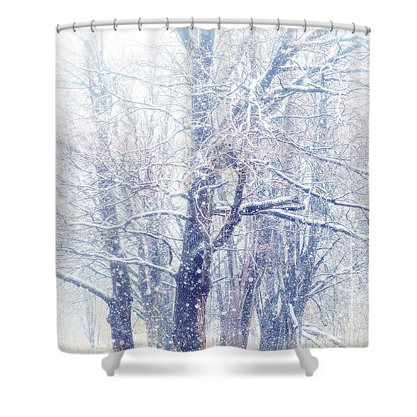 First Snow. Dreamy Wonderland Shower Curtain