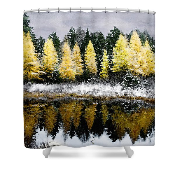 Tamarack Under A Painted Sky Shower Curtain