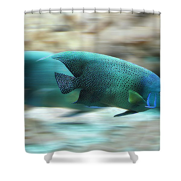 Fish Shower Curtain