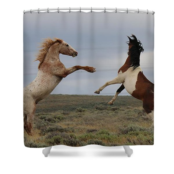Fist Fight  Shower Curtain