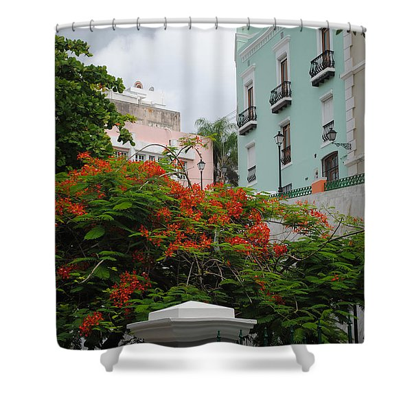 Flamboyan In Park Shower Curtain