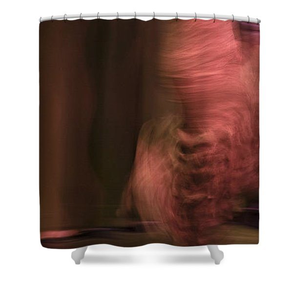 Shower Curtain featuring the photograph Flamenco Series 8 by Catherine Sobredo