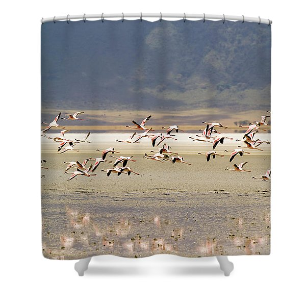 Flamingos Flying Over Water Shower Curtain